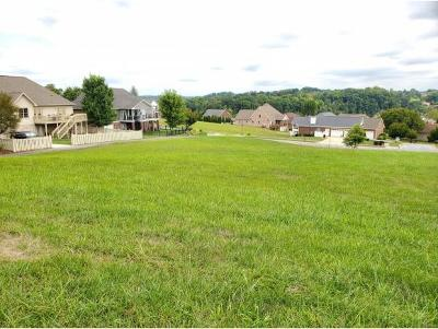 Johnson City Residential Lots & Land For Sale: 1098 Georgetown Row