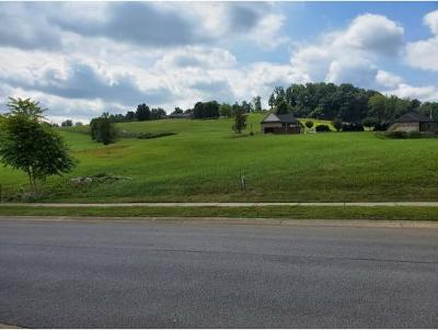 Johnson City Residential Lots & Land For Sale: 1116 Georgetown Row