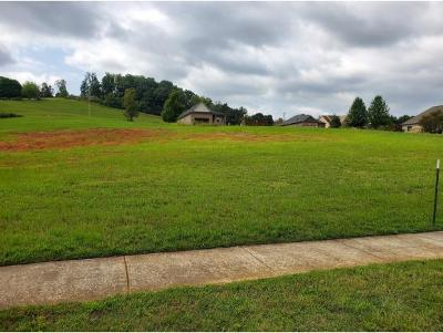 Johnson City Residential Lots & Land For Sale: 1134 Georgetown Row