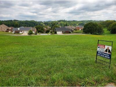 Johnson City Residential Lots & Land For Sale: 1117 Embassy Row