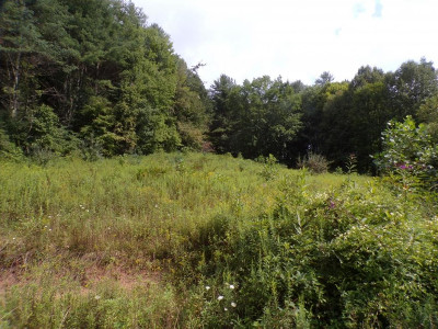Residential Lots & Land For Sale: TBD Dug Hill Road