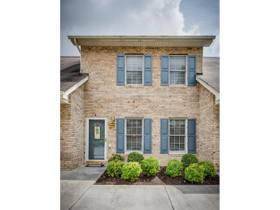 Kingsport Single Family Home For Sale: 2663 Timbers Edge Trace