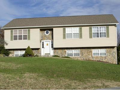 Greene County Single Family Home For Sale: 34 East Ridges Drive