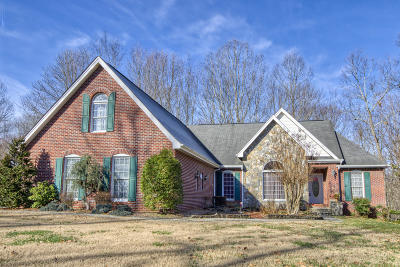 Piney Flats Single Family Home For Sale: 209 Allison Court