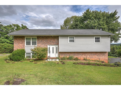 Kingsport Single Family Home For Sale: 240 Royal Dr