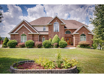 Piney Flats Single Family Home For Sale: 1257 Rice Cross Road