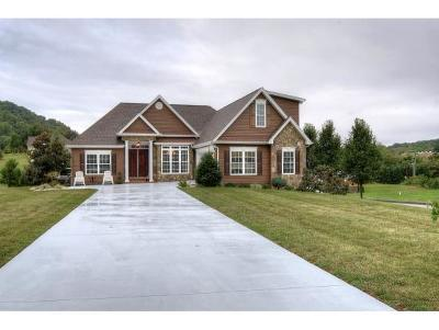 Kingsport Single Family Home For Sale: 1124 Martingale Sq
