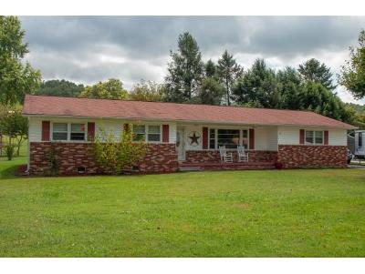 Elizabethton Single Family Home For Sale: 182 Price Rd.
