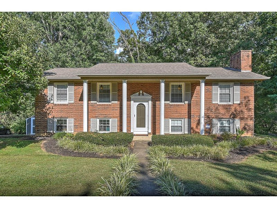 Kingsport Single Family Home For Sale: 1041 Amersham