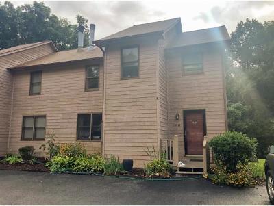 Condo/Townhouse For Sale: 205 Windridge Colony #-