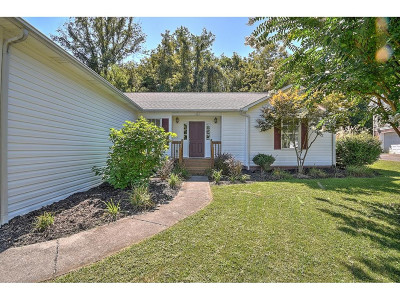 Single Family Home For Sale: 1305 Kennesaw Dr