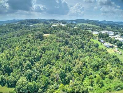 Kingsport TN Single Family Home For Sale: $1,350,000