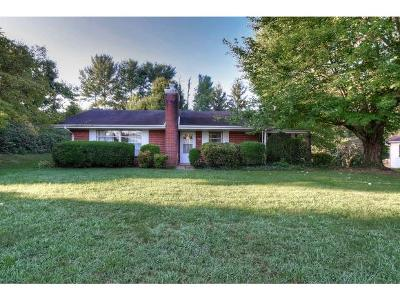 Jonesborough Single Family Home For Sale: 504 East Main St