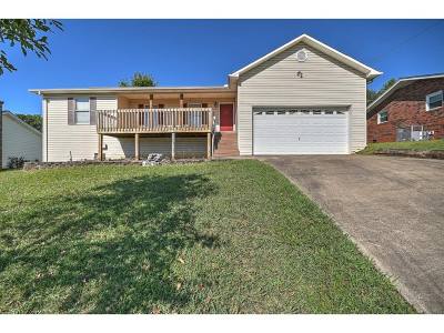 Kingsport Single Family Home For Sale: 913 Starling Dr