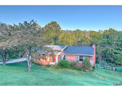Kingsport Single Family Home For Sale: 205 Lonewood