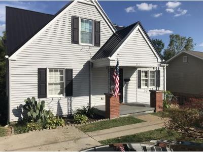 Kingsport Single Family Home For Sale: 217 Union Street