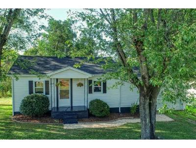 Johnson City Single Family Home For Sale: 2210 Hicks Road