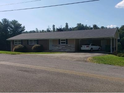 Kingsport Single Family Home For Sale: 428 Merman Road