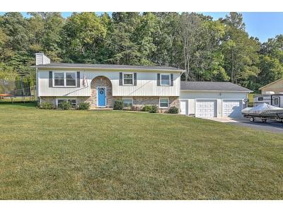 Kingsport Single Family Home For Sale: 3036 Ridgemont Circle