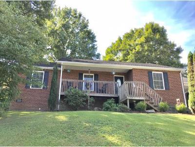 Kingsport Single Family Home For Sale: 316 Montezuma Rd