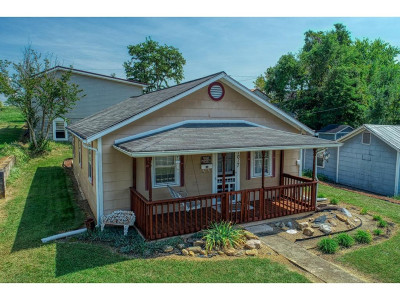Kingsport Single Family Home For Sale: 1017 Fairview Avenue
