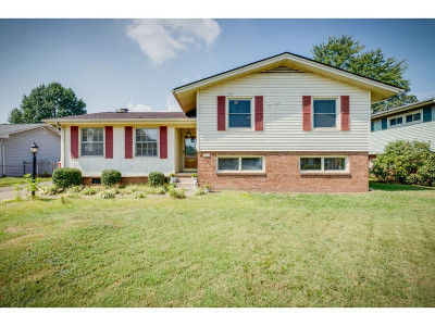 Kingsport Single Family Home For Sale: 1917 Hermitage Drive