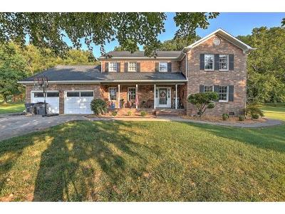 Kingsport TN Single Family Home For Sale: $399,500