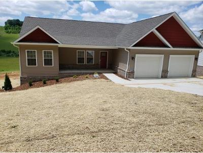 Kingsport TN Single Family Home For Sale: $389,000