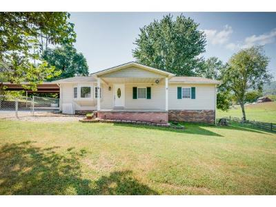 Unicoi TN Single Family Home For Sale: $114,900