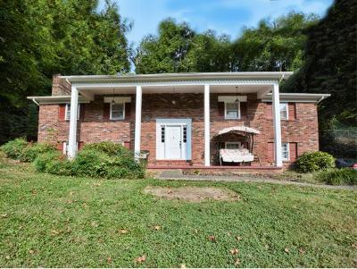 Kingsport TN Single Family Home For Sale: $179,900
