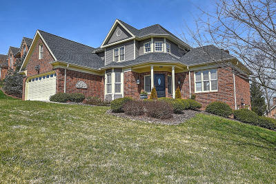 Kingsport TN Single Family Home For Sale: $395,000