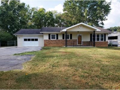 Bristol Single Family Home For Sale: 732 Meadow View Road