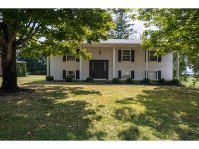 Jonesborough Single Family Home For Sale: 207 Rainbow Dr