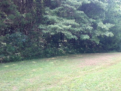 Sparta TN Residential Lots & Land For Sale: $7,000