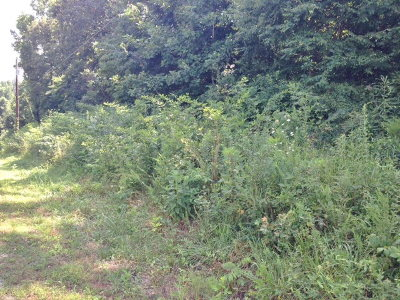 Sparta TN Residential Lots & Land For Sale: $10,000
