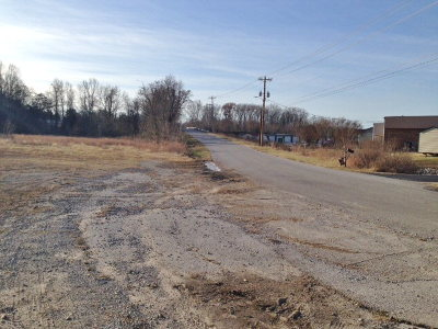 McMinnville TN Residential Lots & Land For Sale: $125,000