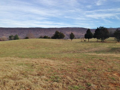 McMinnville TN Residential Lots & Land For Sale: $229,000