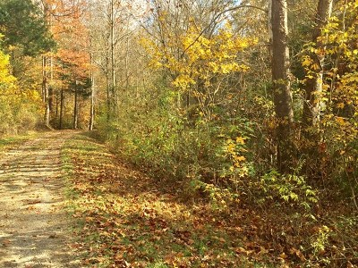 Chestnut Mound TN Residential Lots & Land For Sale: $10,000