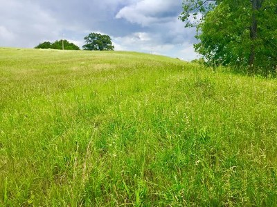 Cookeville TN Residential Lots & Land For Sale: $32,000