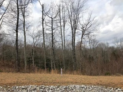 Albany KY Residential Lots & Land For Sale: $53,000