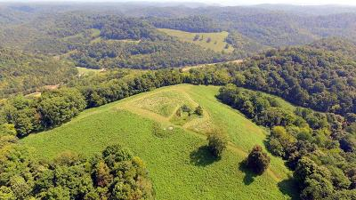 Whitleyville TN Residential Lots & Land For Sale: $185,000