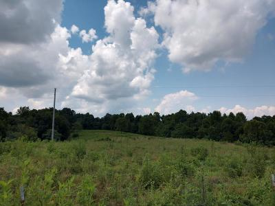 Residential Lots & Land For Sale: 73.4 Ac Henley Rd