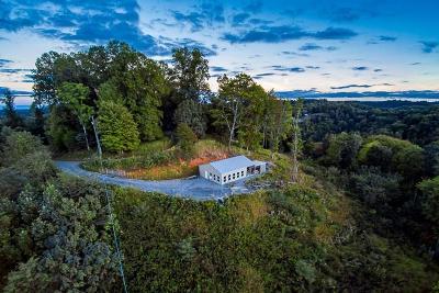 Gainesboro Single Family Home For Sale: 276 Schelley Road