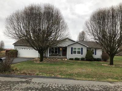 Sparta Single Family Home For Sale: 215 Walnut Trace