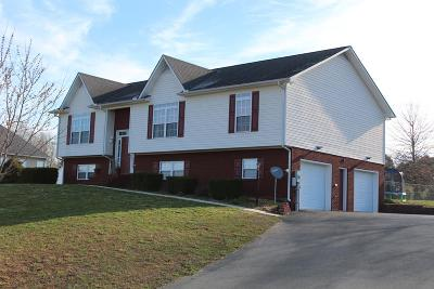 Cookeville Single Family Home For Sale: 3108 Brookstone Court