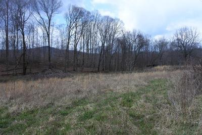 Residential Lots & Land For Sale: 34 Ac Tyler Point Rd.