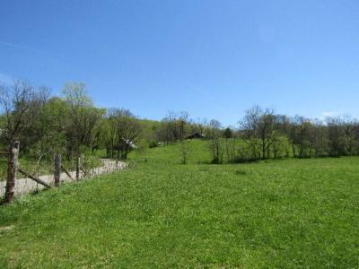 Monterey TN Residential Lots & Land For Sale: $2,499,000