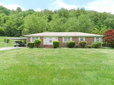 Gainesboro Single Family Home For Sale: 510 South Grundy Quarles Highway