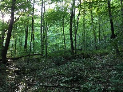 Huntsville TN Residential Lots & Land For Sale: $19,700