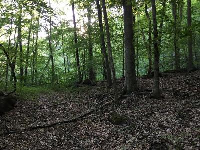 Huntsville TN Residential Lots & Land For Sale: $21,700